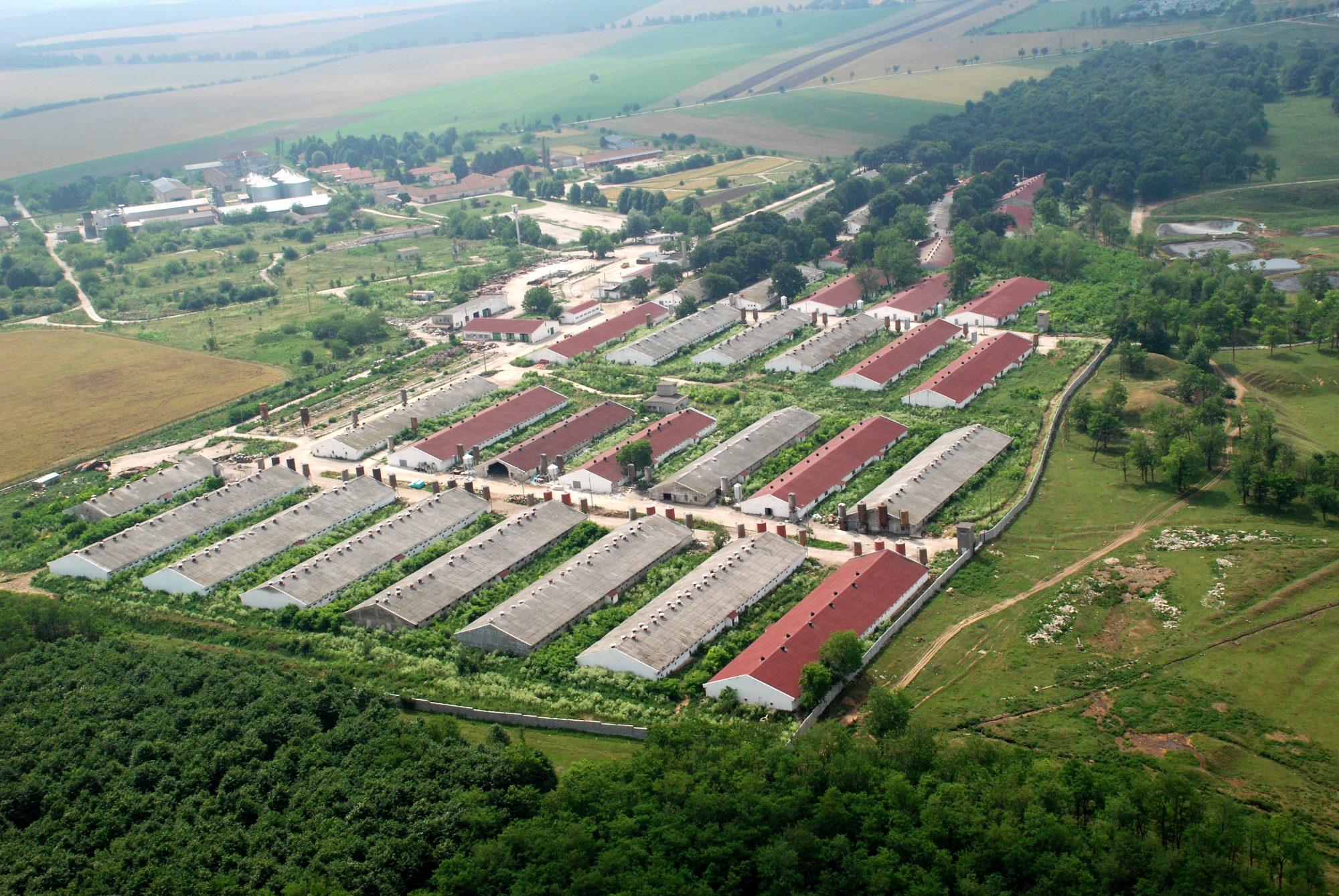 The Pig Farm Agrotime